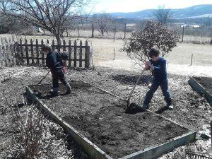 boys garden